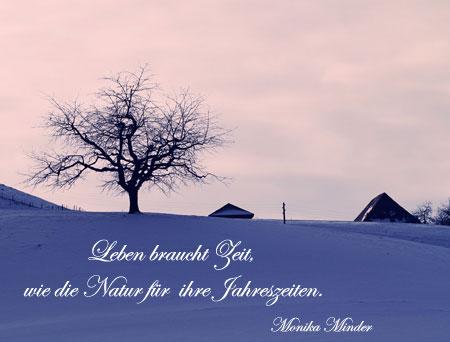 11 Dezember Advents Gedanken Sprüche Und Gedichte