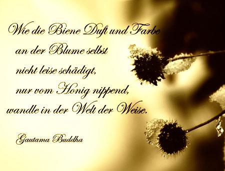 Adventsgedanken zum 18. Dezember   Sprüche und Gedichte
